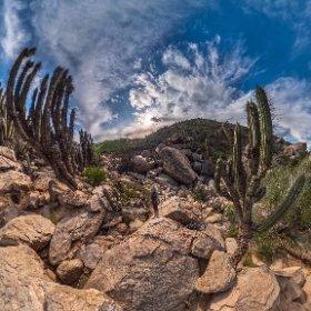 Ruta a Baños del Inca, Valle del Encanto, Ovalle. IV Región de Chile.