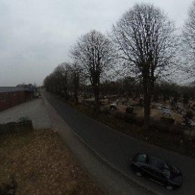 Da waren noch Bäume und Häuser #theta360 #theta360de