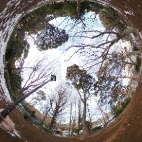 上野の山の前方後円墳で墳頂シータ。 #摺鉢山古墳 #古墳 #theta360
