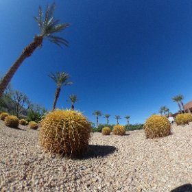 Final shoot of beautiful Palm Springs convention center after the #cmcmath conference. #theta360