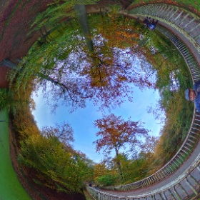 Autumn Walk in Brussels  #theta360