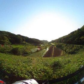 池と棚田 長崎県平戸市 VRでバイク旅 日本一周【45日目】http://www.merkurlicht.com #theta360