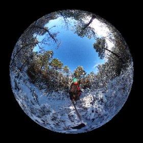 Pinar de Villaverde del Ducado #theta360