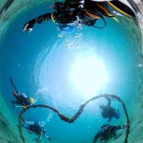 2021/05/08 獅子浜 #ハート #padi #diving #フリッパーダイブセンター #伊豆大島 #theta #theta_padi #theta360 #群馬 #伊勢崎 #ダイビングショップ #ダイビングスクール #ライセンス取得 #padiライフ