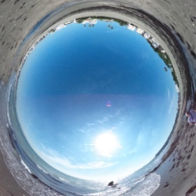 Palm trees and sea #theta360