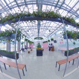 #東京ストロベリーパーク #strawberryfarm #theta360