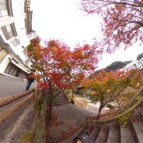 竹田駅付近紅葉20171117