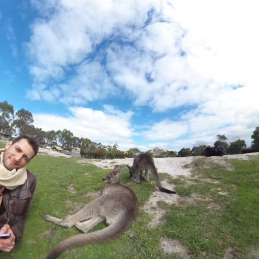 360° VR Känguru view. They see me chillin', they hatin :D #druustory