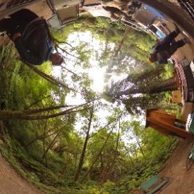 Camping at Van Damme 3 #theta360