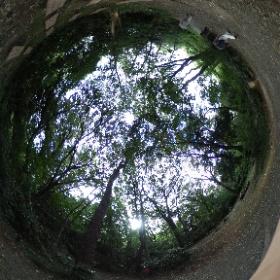 こんにちは!ドイツ式カイロプラクティック逗子整体院です。 東京の自然教育園に散歩に行ってきました。ブラタモリを見て久しぶりに行きたかったの、やっといけました。すごい深い緑の自然に感動しました。腰痛など足の調子整えてこんな素敵な公園散歩しましょうよ。歩くのあきらめている方にエール送ります!ほぐして楽にしませんか? www.zushi-seitai.com  ドイツ式カイロプラクティック逗子整体院です。 #theta360