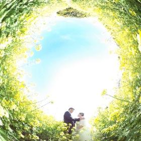 Feel So High! Kenichi Morinaga photography https://www.photomoriken.net/  #sakura3d  #theta360