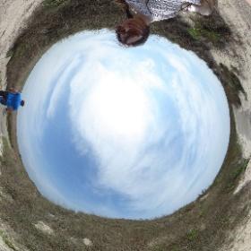 Padre Island, Texas, Usa  #theta360