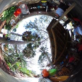 Gill Dawg Tiki Bar and Marina, Port Richey, FL