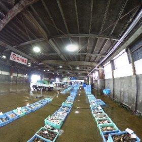[360度撮影]羅臼漁港卸売市場 #theta360