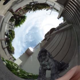 Roaring back at a lion in a 360 #panorama #theta360