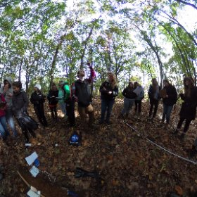 @Cove River 11am Oct 20, 2016, soil core and forest canopy #GLOBE #theta360