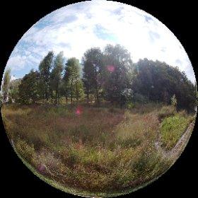 10月7日新潮こうざ「東京古道散歩」の下見シータ。 恋ヶ窪の恋といえば姿見の池。そこの東山道武蔵路跡にて、奈良時代はここを道路が通ってた! 皆様是非ご参加を。 #新潮講座 #東京古道散歩 #theta360