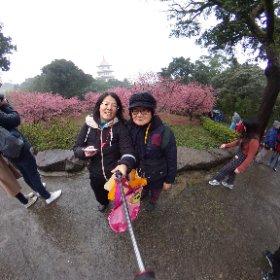 #Sakura3D #theta360