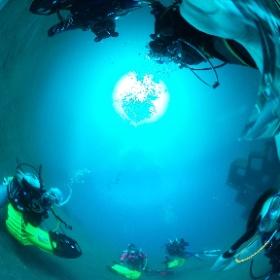 2020/02/11 大瀬崎・水中スクーターツアー #padi #diving #FLIPPER-dc #フリッパーダイブセンター #大瀬崎 #theta #theta_padi #theta360 #群馬 #伊勢崎 #ダイビングショップ #ダイビングスクール #ライセンス取得