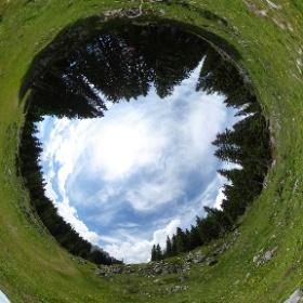 """Orlo nord delle """"Buse"""" - Parco della Memoria di Pian dei Buoi, area di Col Vidal - luglio 2016   #theta360 #theta360it"""