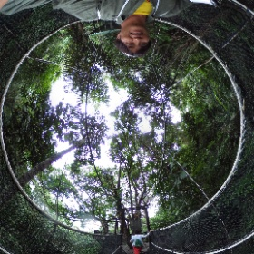 #Jungle #walk #canopy #bridge #borneo #malaysia #adventure  #theta360
