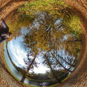 Autumn Cycling in Belgium  #momiji3d  #theta360