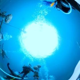 2020/06/23雲見 #padi #diving #フリッパーダイブセンター #雲見 #theta #theta_padi #theta360 #群馬 #伊勢崎 #ダイビングショップ #ダイビングスクール #ライセンス取得