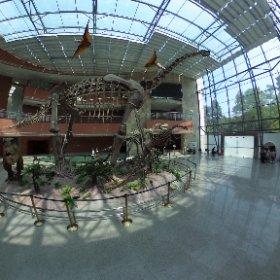 恐龍蛋博物館360 #theta360