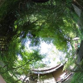 Kamakura Ichijoekansanso  鎌倉 一条恵観山荘  ドイツ式カイロプラクティック逗子整体院 SINCE 1994 www.zushi-seitai.com