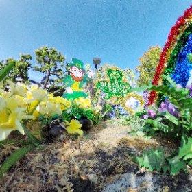 #HappyStPatricksDay #StPatricksDay #theta360