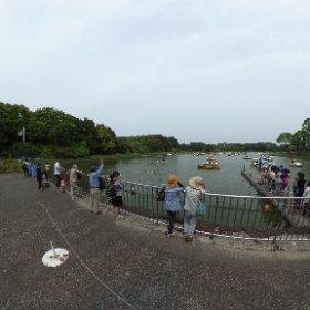 昭和記念公園。スワンボートの密度がすごい。 #theta360