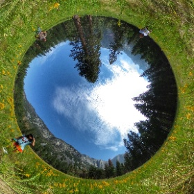 Yosemite National Park  #butterfly3d #theta360