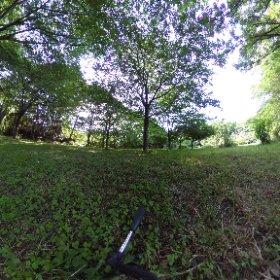 マイTHETA、昨日届いた。色々試して練習中。全生園は、緑がいっぱい。 #theta360