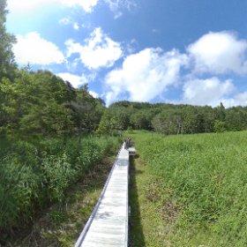 晴天と牛池と湿地 #万座温泉