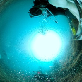 2021/08/29 富戸 #padi #diving #フリッパーダイブセンター #富戸 #theta #theta_padi #theta360 #群馬 #伊勢崎 #ダイビングショップ #ダイビングスクール #ライセンス取得 #padiライフ
