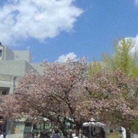 Campus courtyard #theta360
