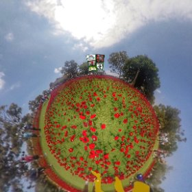 360 spherical Remembrance Armistice Memorial day in Kings park 11th November 2018, SM hub https://goo.gl/ZN4tud BEST HASHTAGS  #RemembranceDayKingsPark   #KingsPark   #ArmisticeDay   #KingsPark  #firefly3d #theta360