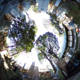 #tokyo #japan #setagaya # temple #九品仏浄真寺 #Joshinji #cemetery #theta360