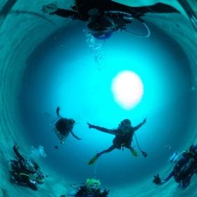 2019//10/31 伊豆海洋公園 #padi #diving #フリッパーダイブセンター #IOP #theta #theta_padi #theta360 #群馬 #伊勢崎 #ダイビングショップ #ダイビングスクール #ライセンス取得