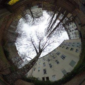 Karpfenteichstraße 2, Berlin-Plänterwald (Treptow), Garten 02