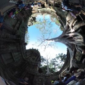 タ・プローム寺院遺跡