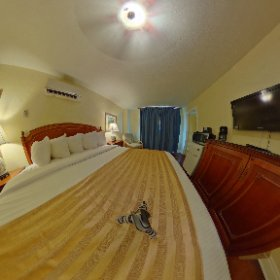 Take a look around a standard king room at the Hollander Hotel in downtown St Pete, Florida! #theta360