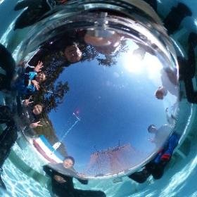 2019//11/19 富戸ツアー #padi #diving #フリッパーダイブセンター #富戸 #theta #theta_padi #theta360 #群馬 #伊勢崎 #ダイビングショップ #ダイビングスクール #ライセンス取得