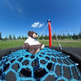 Teddy around the province #theta360