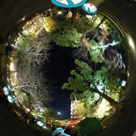 マスター、ライトアップと月が綺麗です~♪ in東寺 #初音ミク #miku360 #theta360