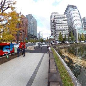 皇居のお堀の銀杏並木が美しい季節。 東京駅と一緒だけれど、発色を意識してみました。水の感じも良いかな。 #theta360