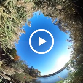 Claypit Creek, Hartshorne Woods,  #Theta360Video Clip 2