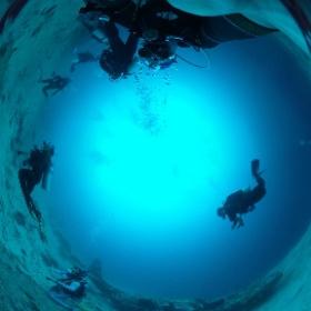 2019/03/19 Moalboal/Cebu/Philippines @エメラルドグリーン ダイビングセンター #padi #diving #フリッパーダイブセンター #cebu #theta #theta_padi #theta360