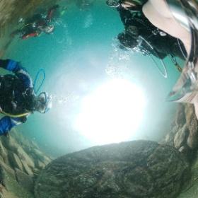 2021/07/10 獅子浜 #真実の口 #padi #diving #フリッパーダイブセンター #大瀬崎 #theta #theta_padi #theta360 #群馬 #伊勢崎 #ダイビングショップ #ダイビングスクール #ライセンス取得 #padiライフ