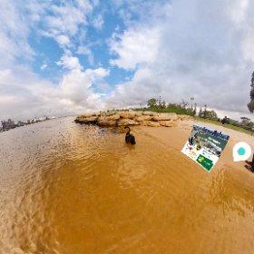 Black Swan 360 spherical Point Belches historical LANDMARK Swan River Perth WA SM hub http://goo.gl/Nn3Hdx  BEST HASHTAGS  #PointBelches  #SouthPerth   #VisitPerthWa   #butterfly3d  #WaTourism #theta360